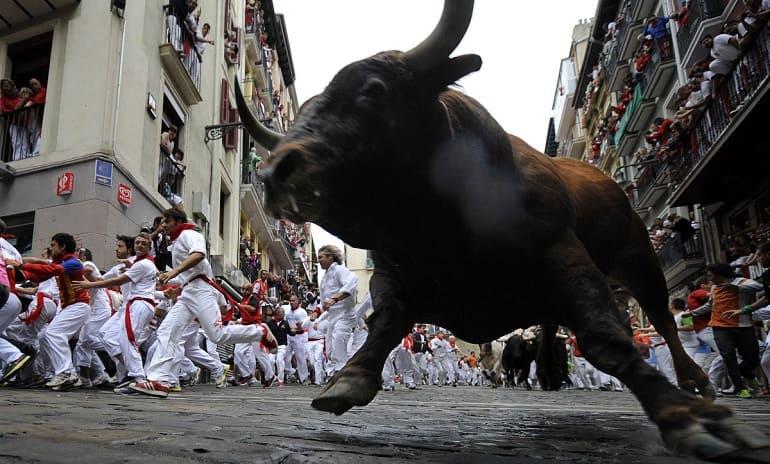 Бегущий бык